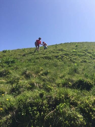 Es ist noch ein bisschen steiler, als es aussieht. Außerdem liegen Kuhfladen rum.