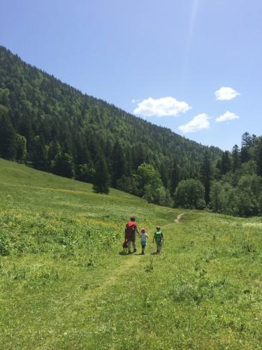 Noch ein bisschen durch die Sonne. Weiter hinten kommt dann Schattenwald und eine Stunde später sind wir wieder im Tal. Als hätten wir's geplant.