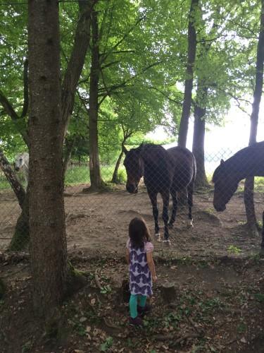 Pferdemädchen halt.