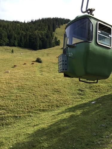 Hoch und runter mit den stilvollen Gondeln der Taubensteinbahn.