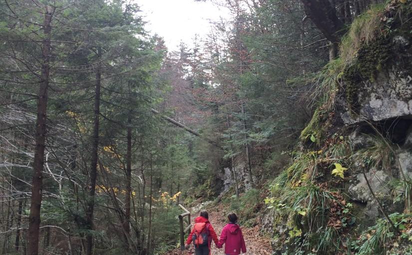 Über die Duftbräu Wasserfälle zu den Daffnerwald-Almen