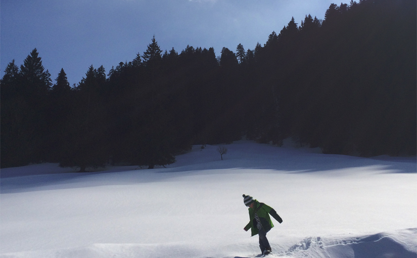 Von Wildbad-Kreuth zur Schwarztennalm