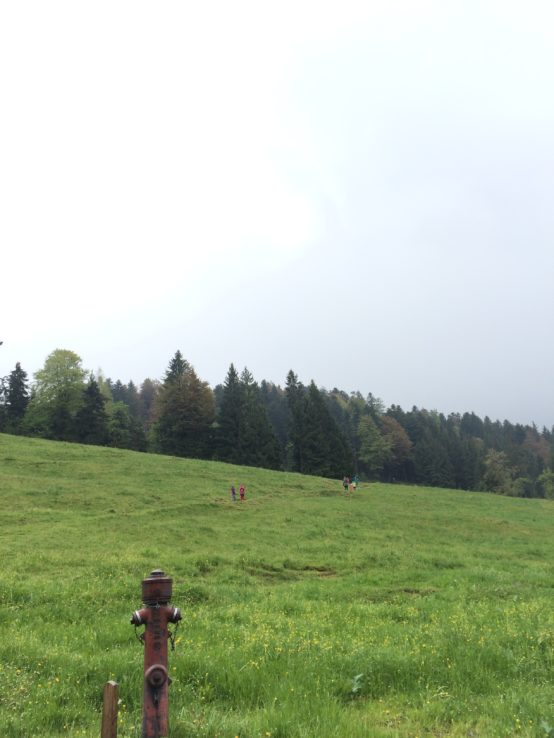Von der Hütte aus geht es erst mal über die Weide nach oben.