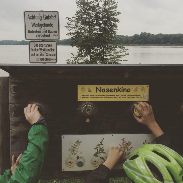 Kurz nach Moosburg. Der Echinger Stausee. Ein bisschen Naturlehrpfad und Vogelbeobachtungsspot-Spot.
