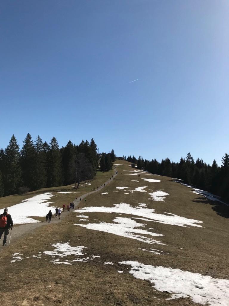 Das letzte Teilstück der Wanderautobahn zur Neureuth Alm.