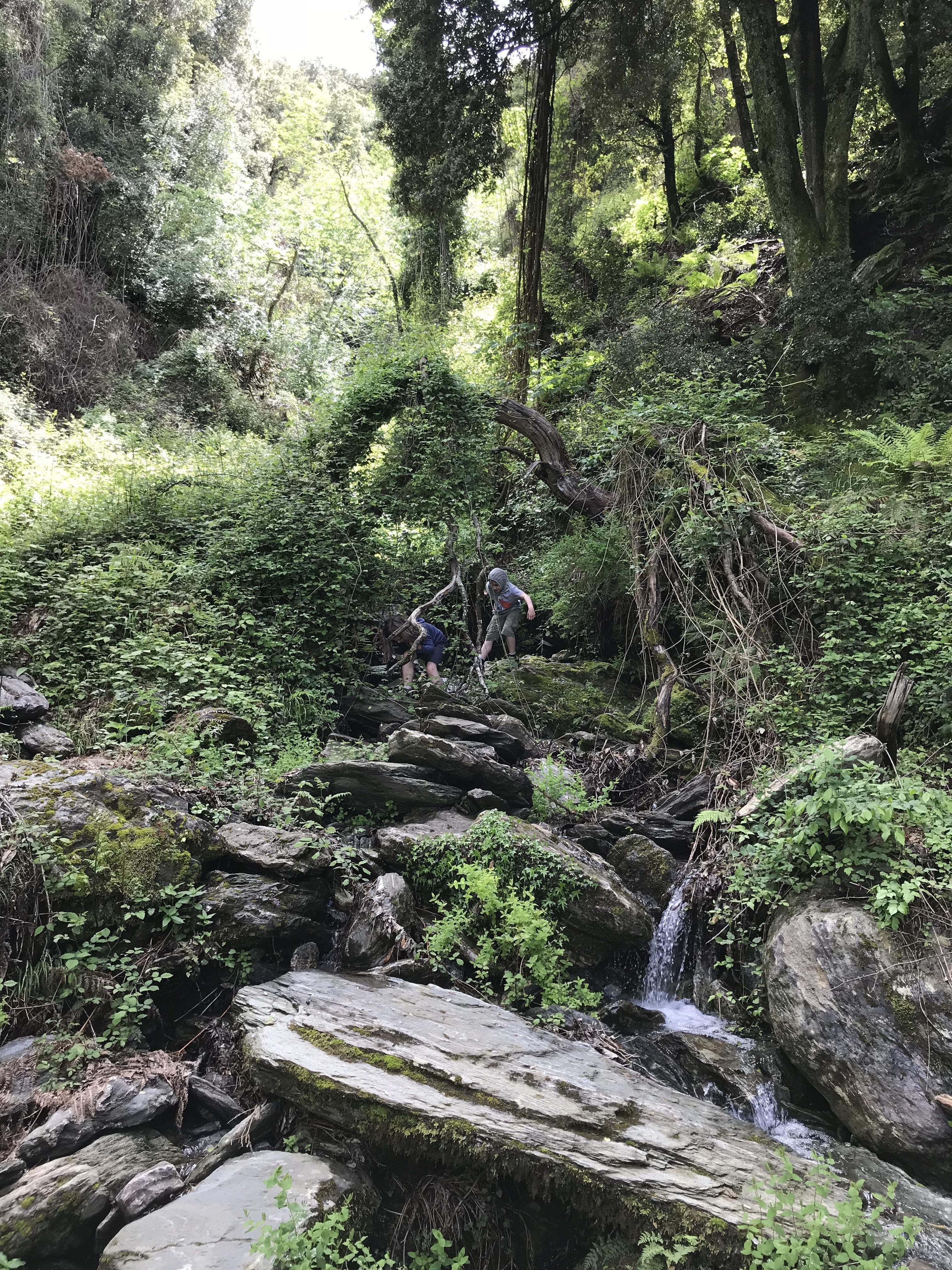 Die meiste Zeit läuft man durch dichten Wald, hat also Schatten.